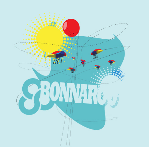 bonnaroo-05.jpg