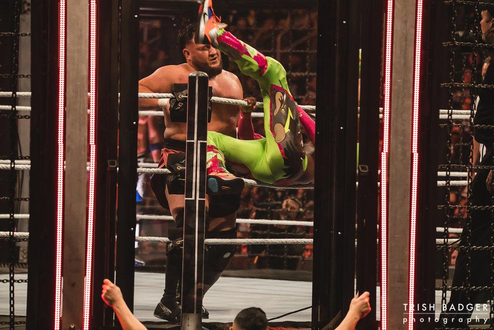 WWEweb-098.jpg
