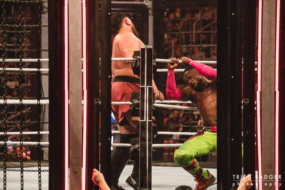WWEweb-099.jpg