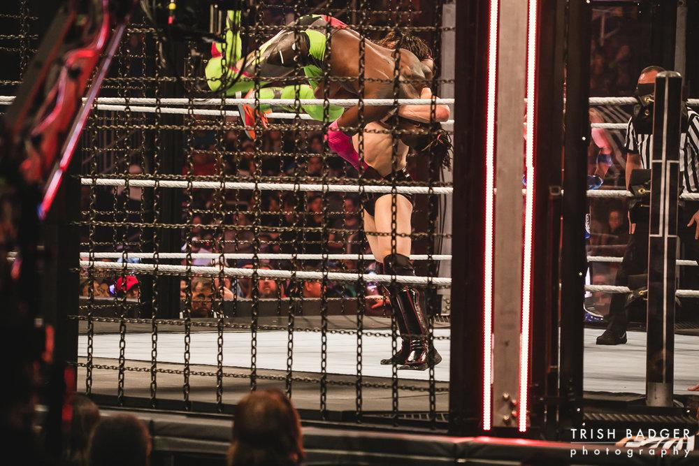 WWEweb-100.jpg