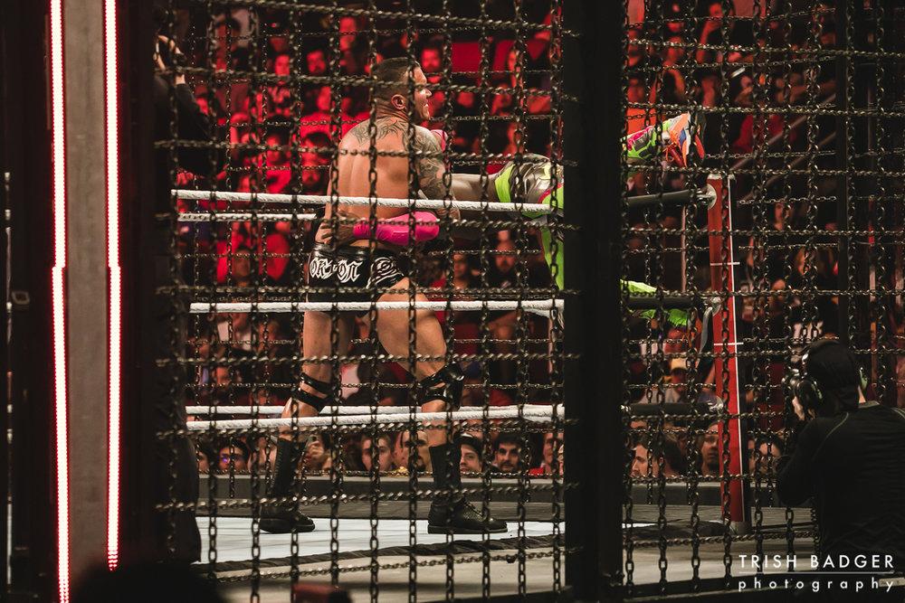 WWEweb-103.jpg