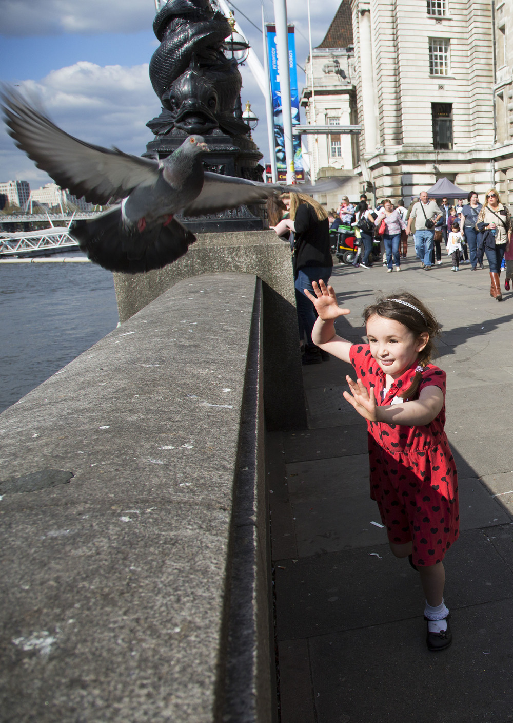 Little girl tries to catch a pigeon which is too quick for her.