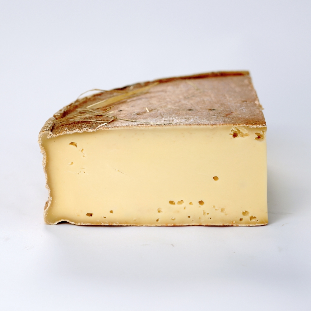 Switzerland Cow Vacherin Fribourgeois.JPG