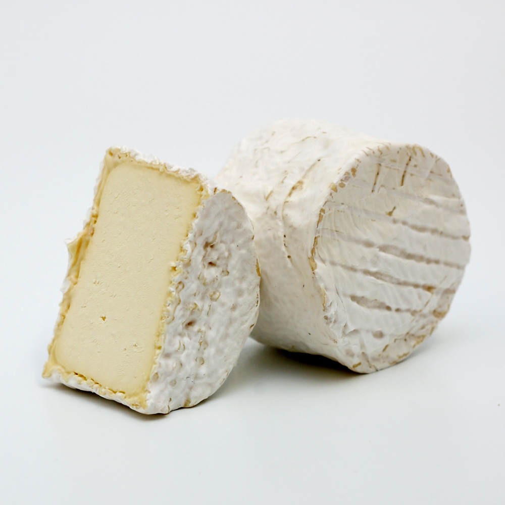 France Cow Chaource.JPG