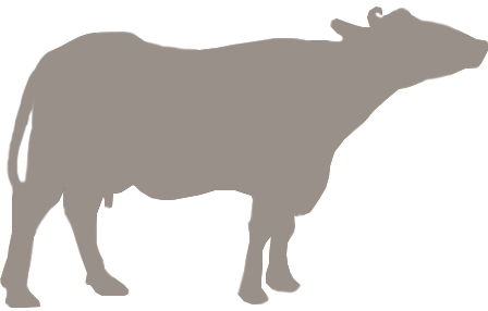 Buffalo Emblem.jpg