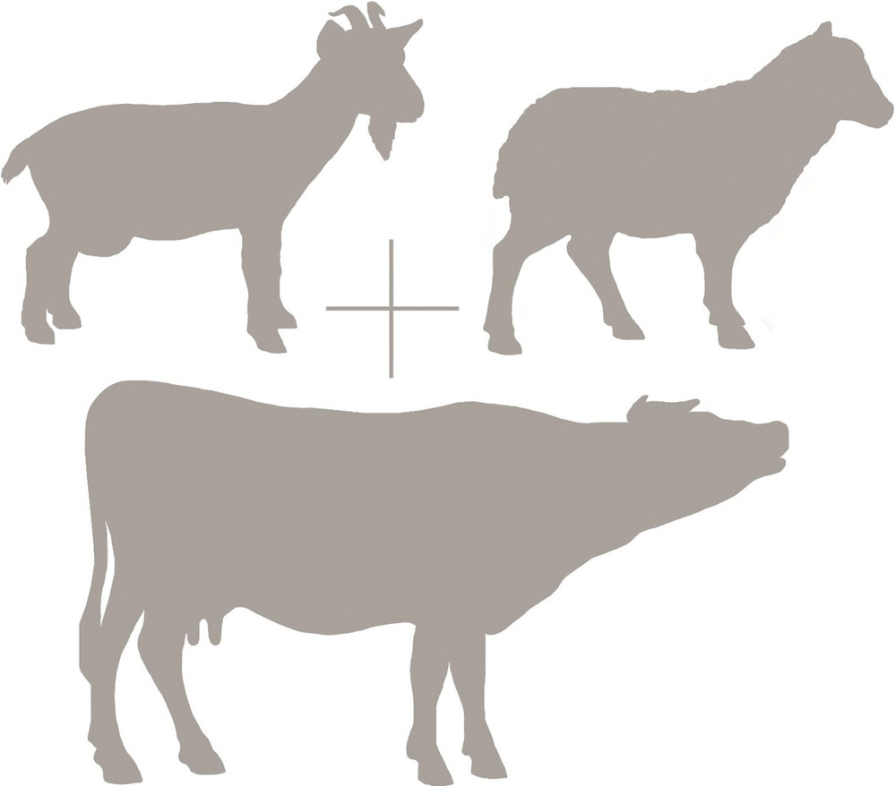 Goat Sheep Cow Emblem.jpg