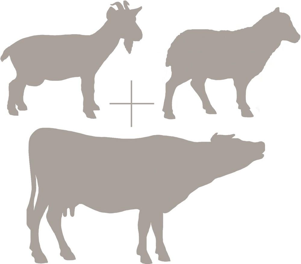 Goat Sheep Cow Emblem.jpg