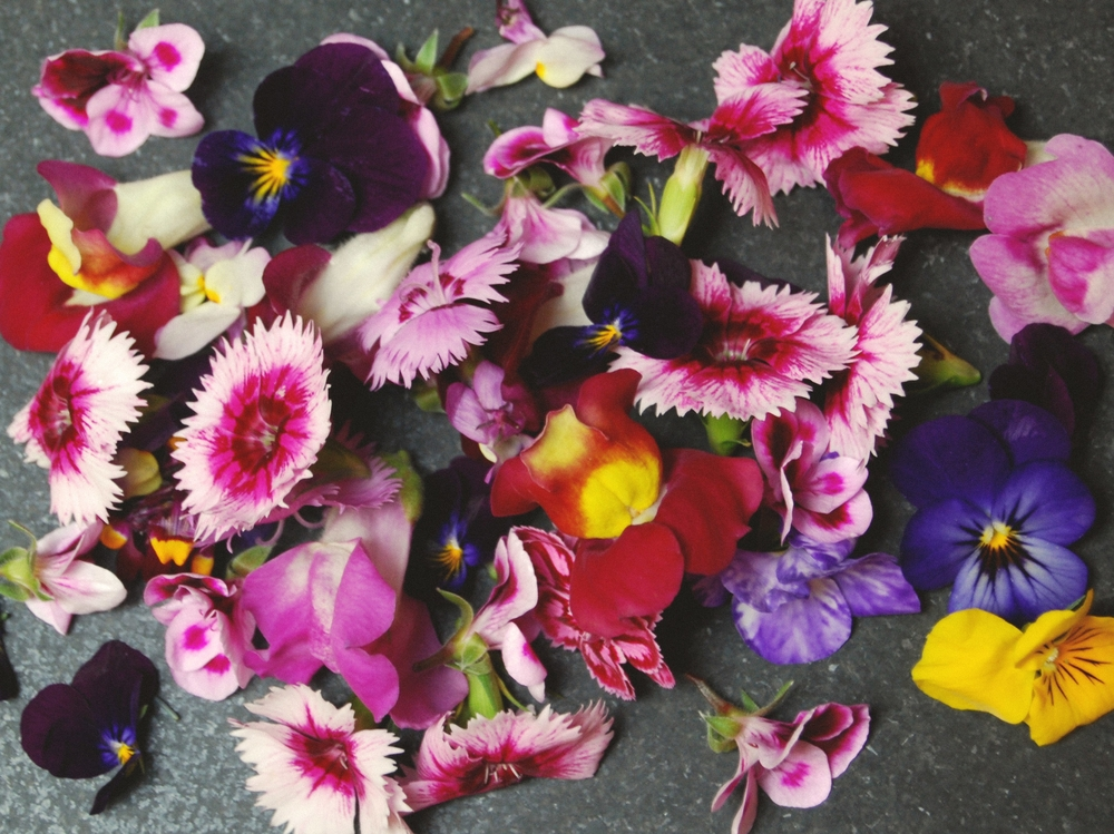 Edible Flowers Edit.jpg