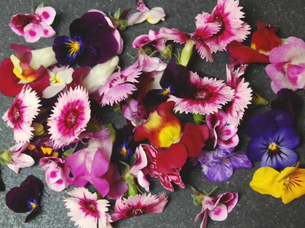Edible Flowers Edit.jpg
