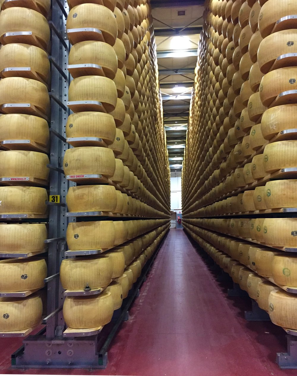 Inside the maturing facility. Photo: Patricia Michelson