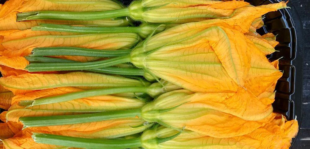 courgette flower web.jpg