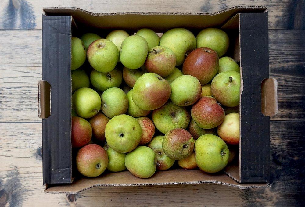 apples brogdale laxtons superb web.jpg