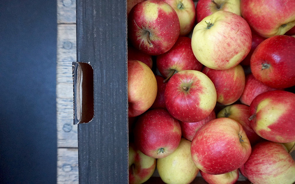 apples brogdale red falstaff web.jpg