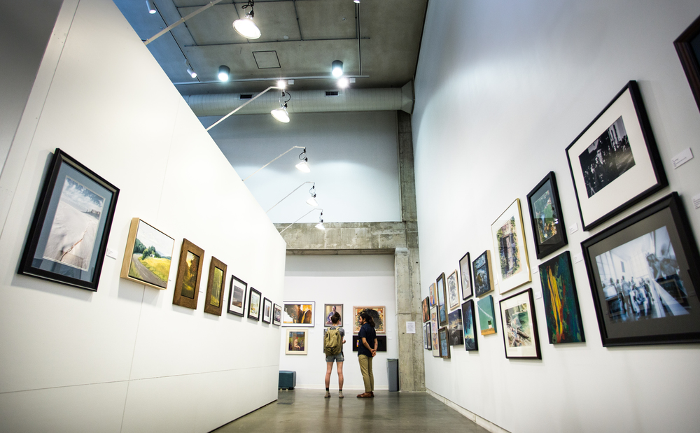Festival of the Arts Regional Exhibition 2014