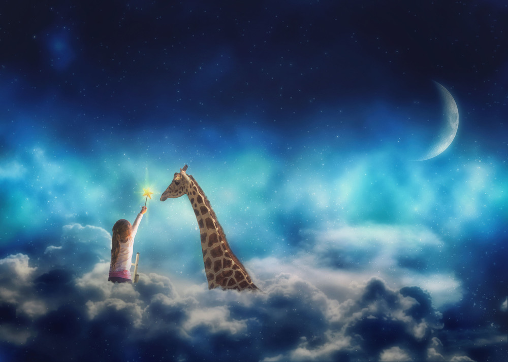 Whimsical Night Overlays & Giraffe Png Collection