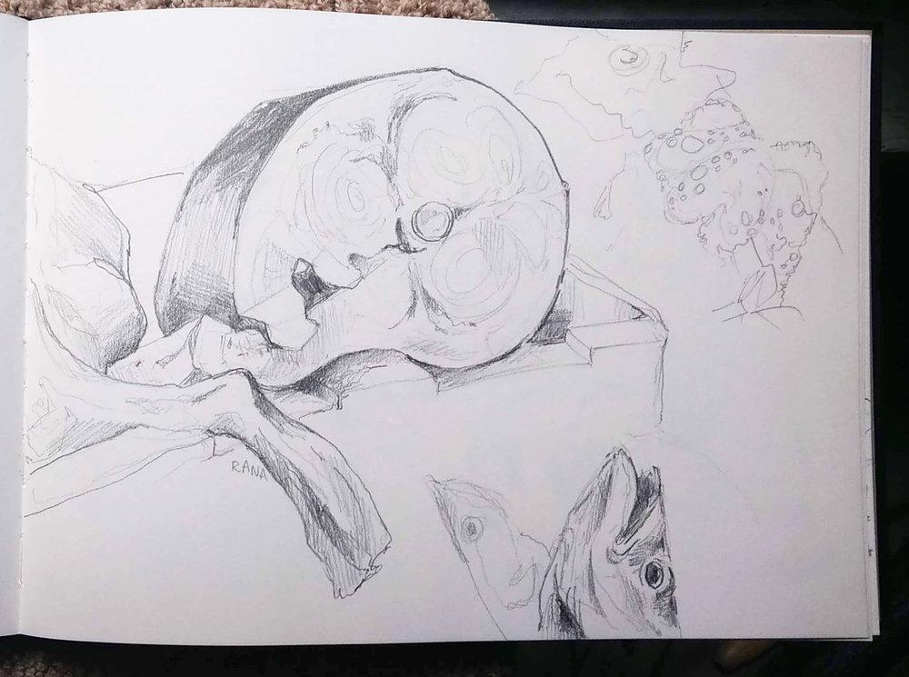 sketchbook_fishmarket.jpg