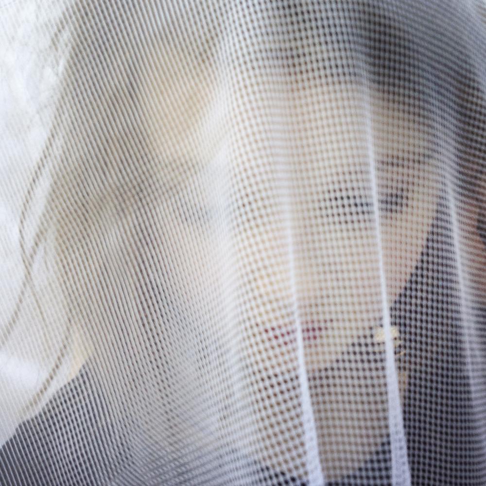 Alice: Mosquito-Net Veil