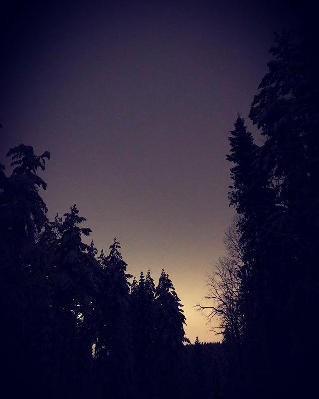 Det er hyggelig å starte uken med litt trillings før middag. Tur retur Østernvann med sprekeste @ingridbilde i front og mini i vogn. Nyte sneen før regnet kommer senere i uken😕 Sjeldent flott i skogen i disse dager🤩 #liveterbestute #liveternå #timetoplay #northernplayground #veientilxreid #mandagsmila