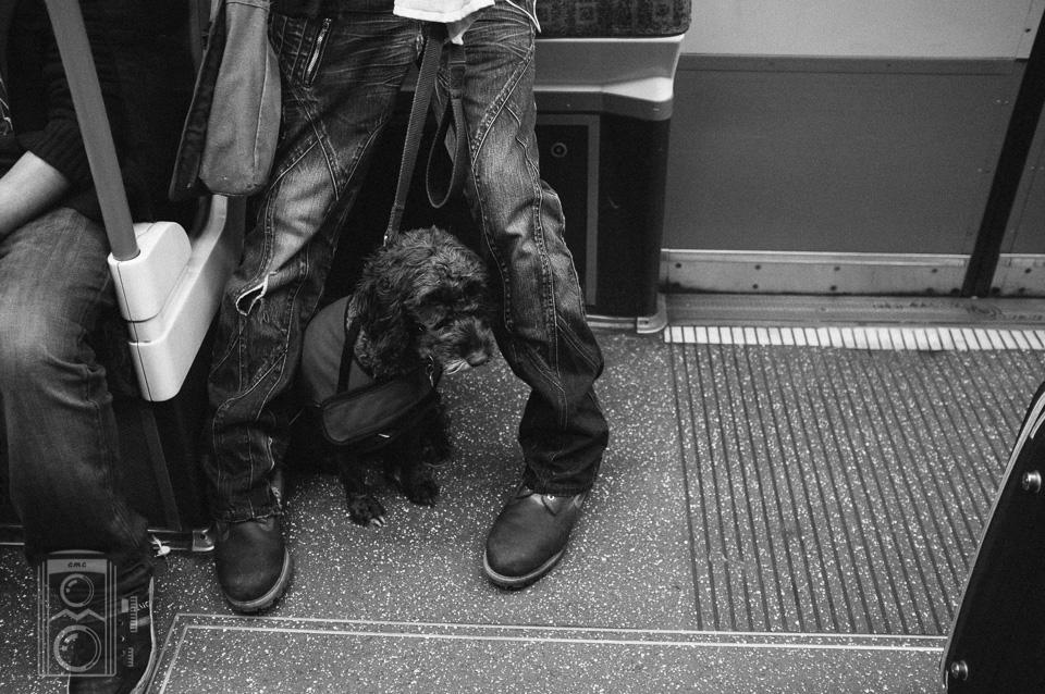 London0046.jpg