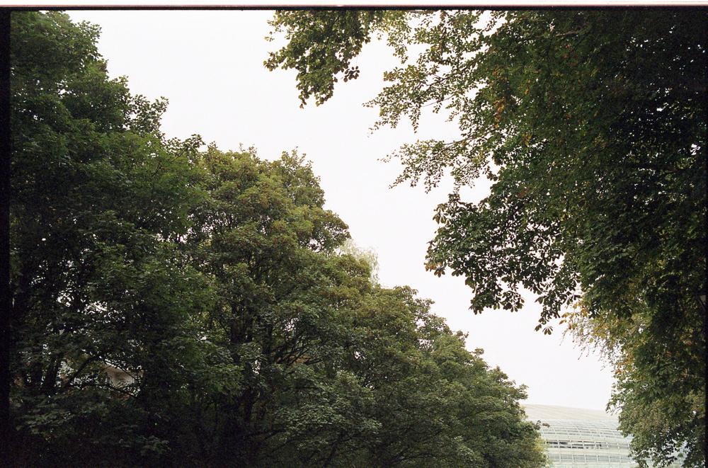 Frame031.jpg