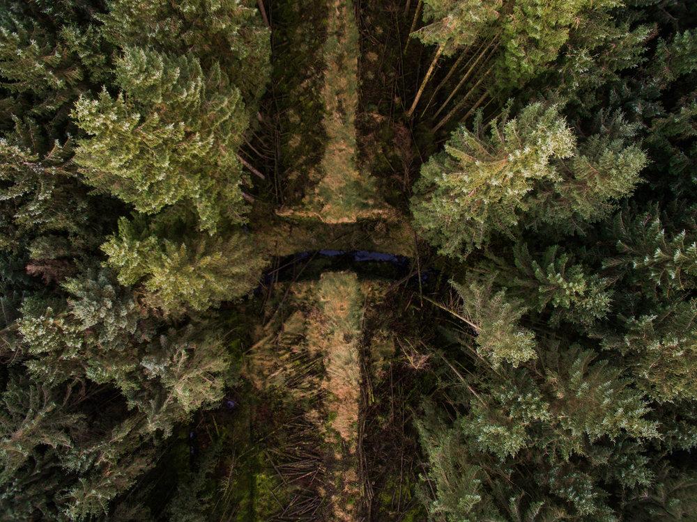 Glenariff Forest, County Antrim, Northern Ireland, Drone Photography, DJI Phantom 3