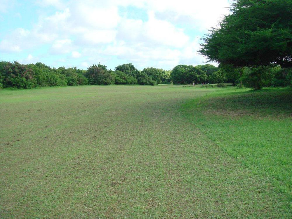 5th fairway - 470 yards, par 5