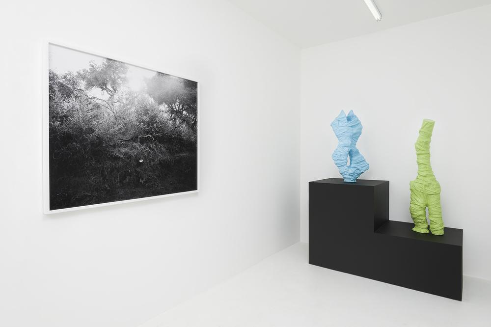 Adam D. Miller & Devon Oder - MythMAKER - Installation