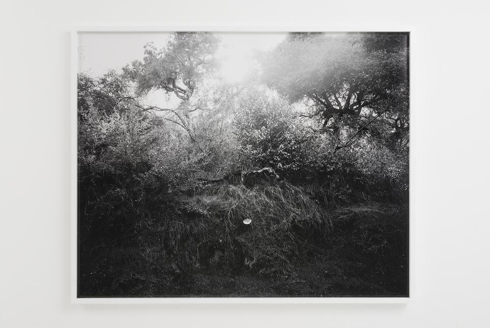 "Devon Oder - Myth Maker - 2016 - Archival Inkjet Print - 40 x 50"""