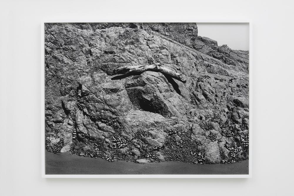 "Devon Oder - Balance - 2016 - Archival Inkjet Print - 22 1/2 x 33"""