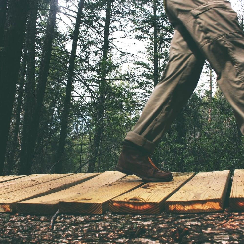 lynDyjGSR9eR57ouPIEE_IMG_woods.jpg