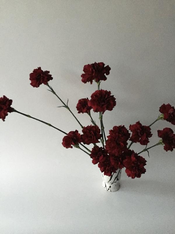 FLOWER MILES: 4,000 |VASE LIFE: 10+ DAYS