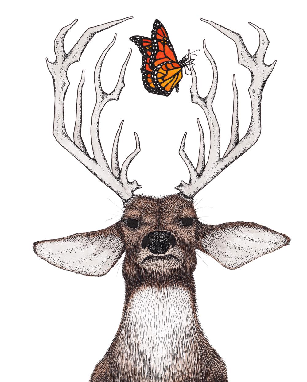 Deer + Butterfly