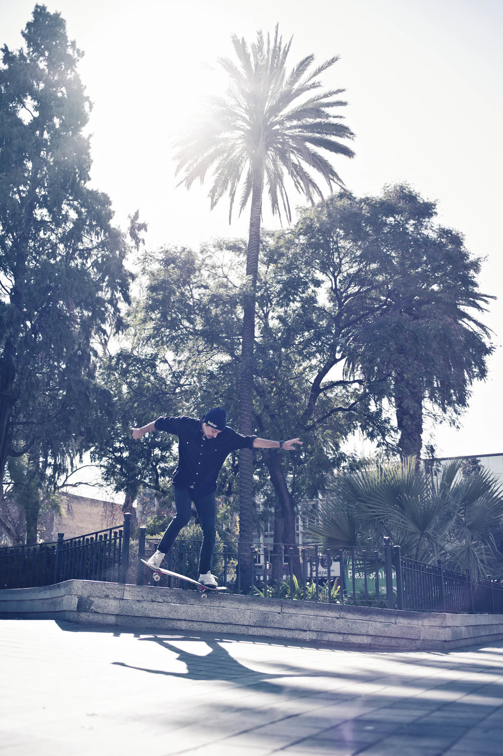 skate-martin-erd-photo-L1004427.jpg