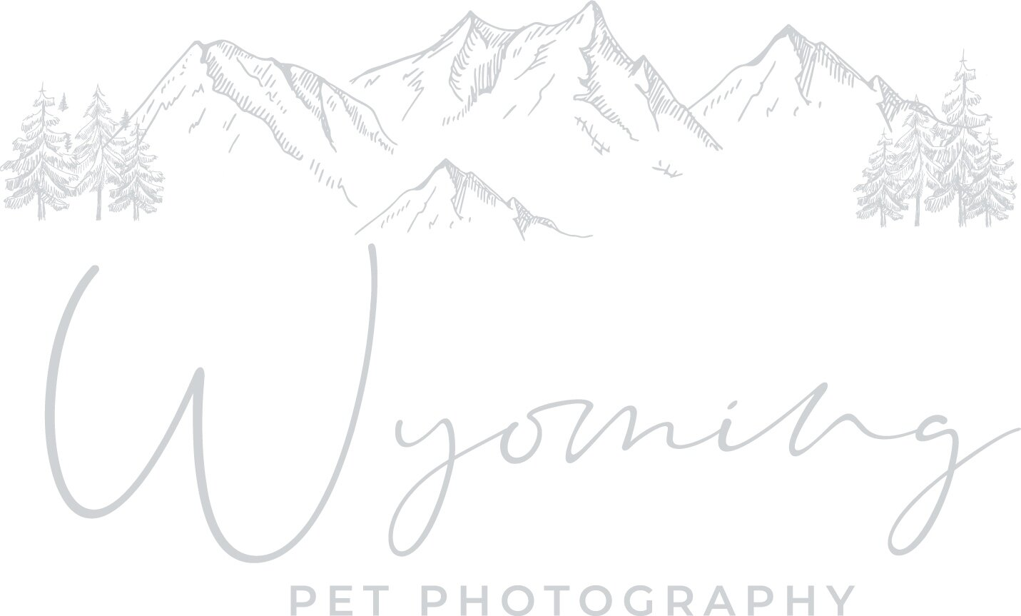 Wyoming Pet Photography