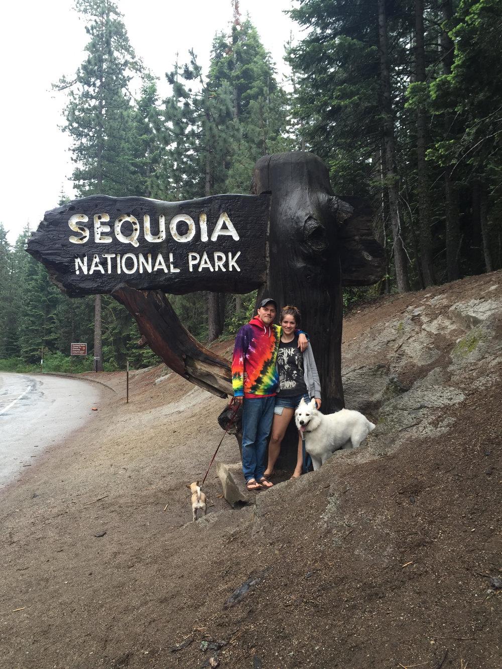 sequoia picture.jpg
