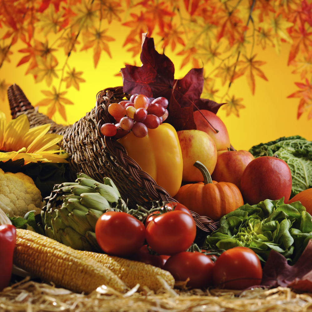 Holiday Fall Cornucopia 17954301_Large.jpg