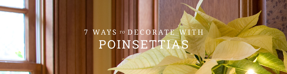 Mahoney's Garden Center - 7 Ways to decorate with Poinsettias