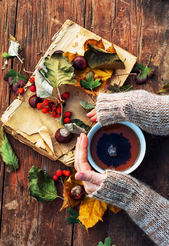 Fall coffee autumn flowers 49744356_Small.jpg