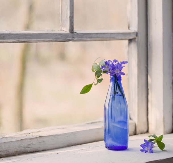 Snowdrop-flowers-in-a-dirty-window-in-the-spring-624511336_611x575.jpeg