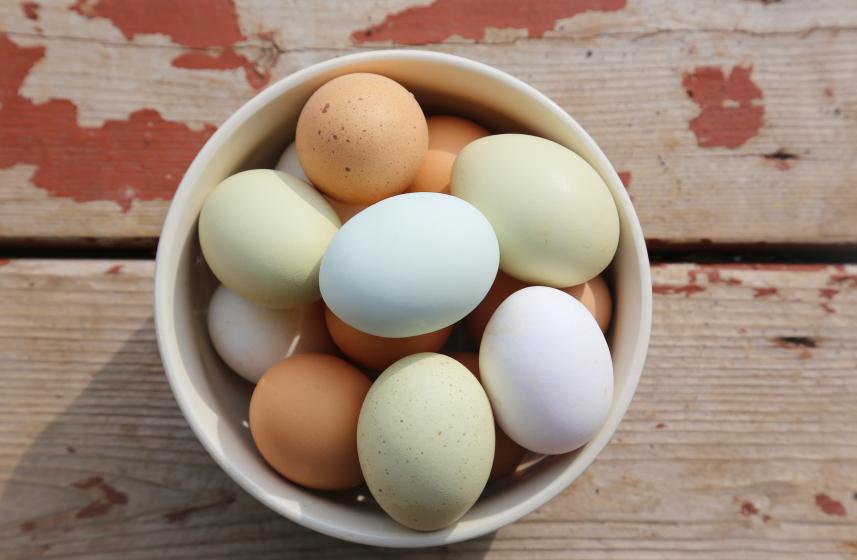 Easter Eggs 39989780_Small.jpg