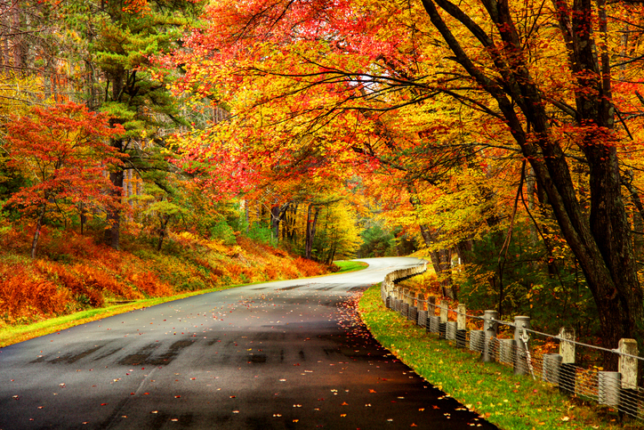 Autumn-road-in-the-Quabbin-region-of-Massachusetts-608509998_727x484.jpeg