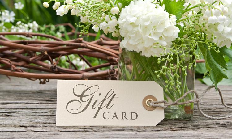 Gift-Certificate-1-HBTSOTR.jpg
