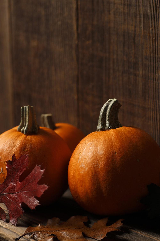 Pumpkin 7357469_Full.jpg