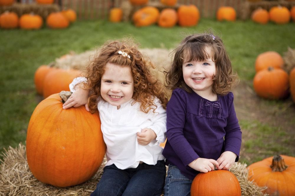 Pumpkin 10855487_Large.jpg