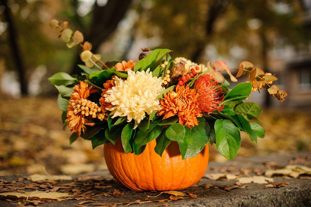 Pumpkin-with-a-beautiful-autumn-flower-composition-1008909164_4256x2832.jpeg
