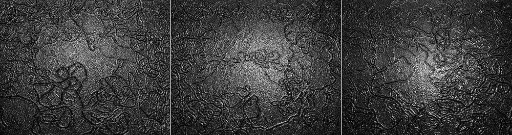 Worm Tracks Triptych