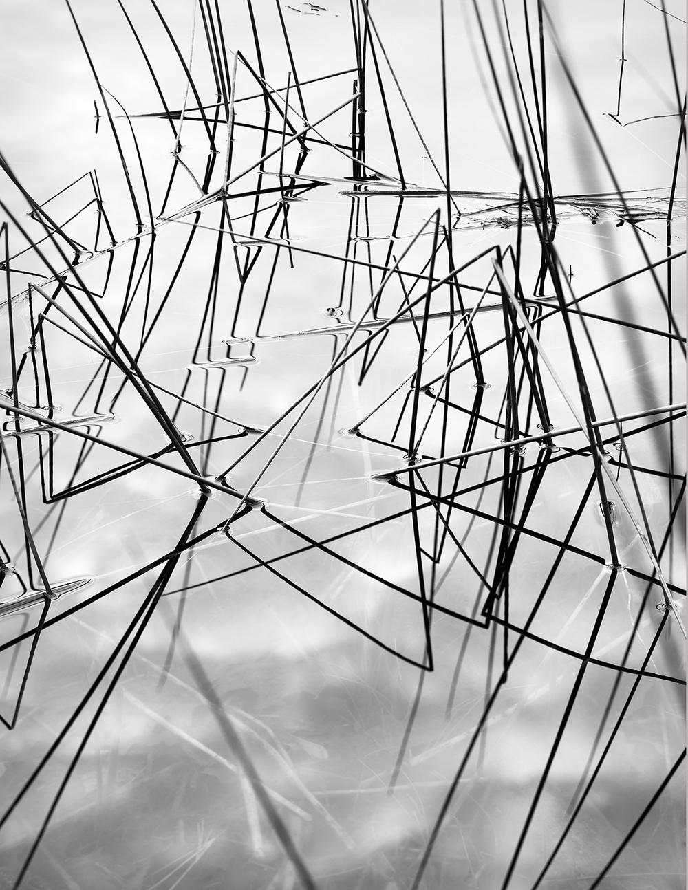 Reed Angles.jpg