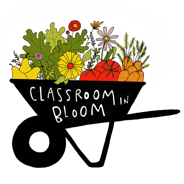 What We Do Classroom In Bloom