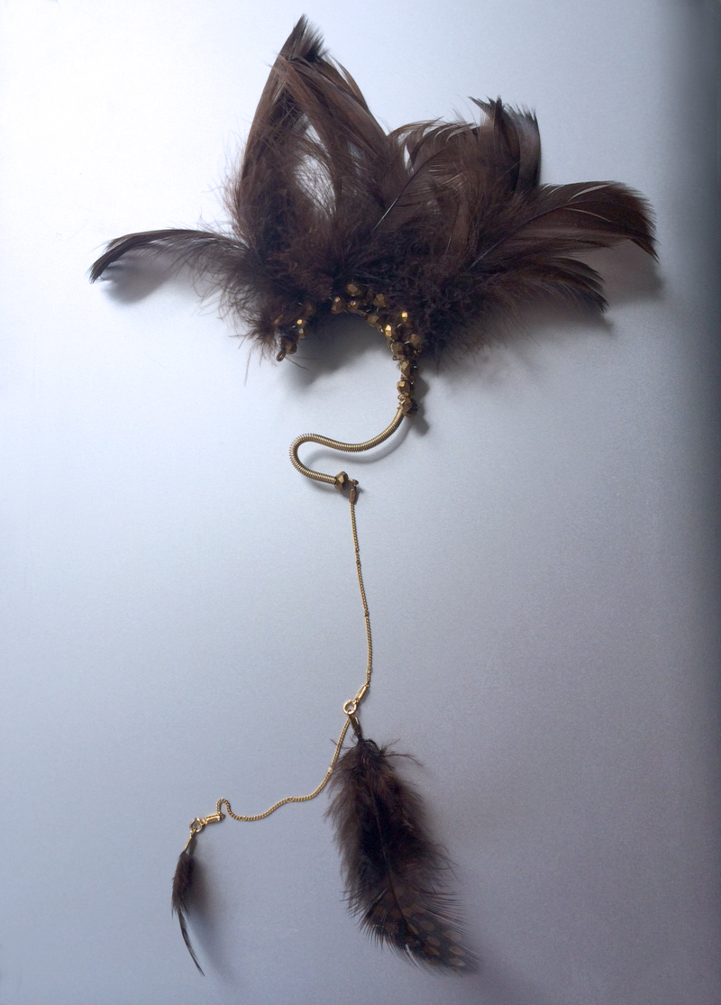 long brown feather