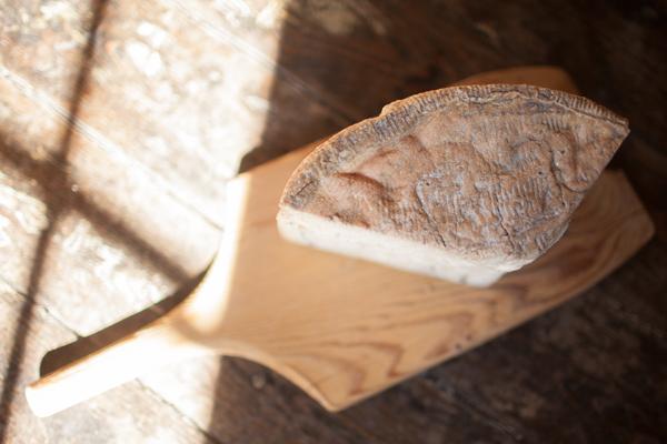 Cavaniola's_10_cheeses_lindsaymorris-3026.jpg